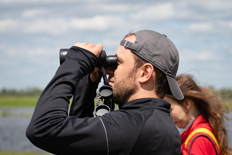 Командная гонка за птицами. Началась регистрация на чемпионат по спортивной орнитологии BirdRace-2020