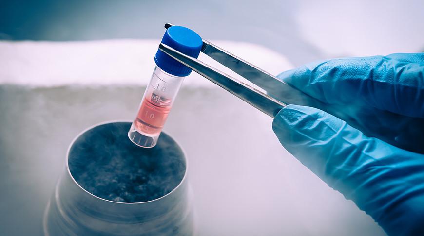 Банк стволовых клеток пациентов с редкими генетическими заболеваниями могут создать в Беларуси