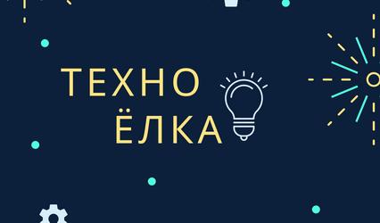 Стартовал областной этап конкурса «ТехноЁлка»