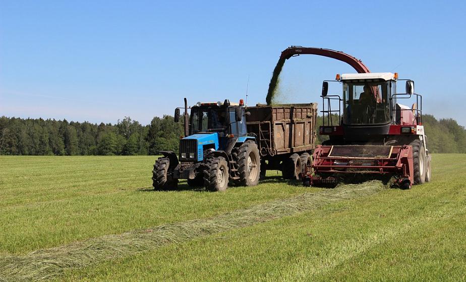 Массовая уборка трав второго укоса началась на Гродненщине