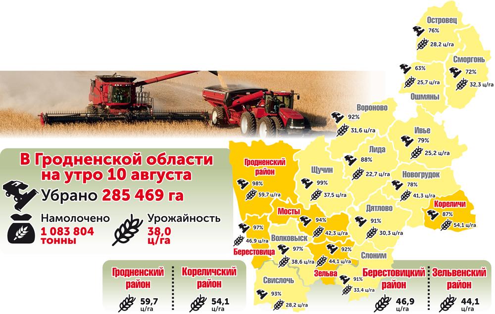 На утро 10 августа в Гродненской области намолочено 1 083 804 тонны зерна
