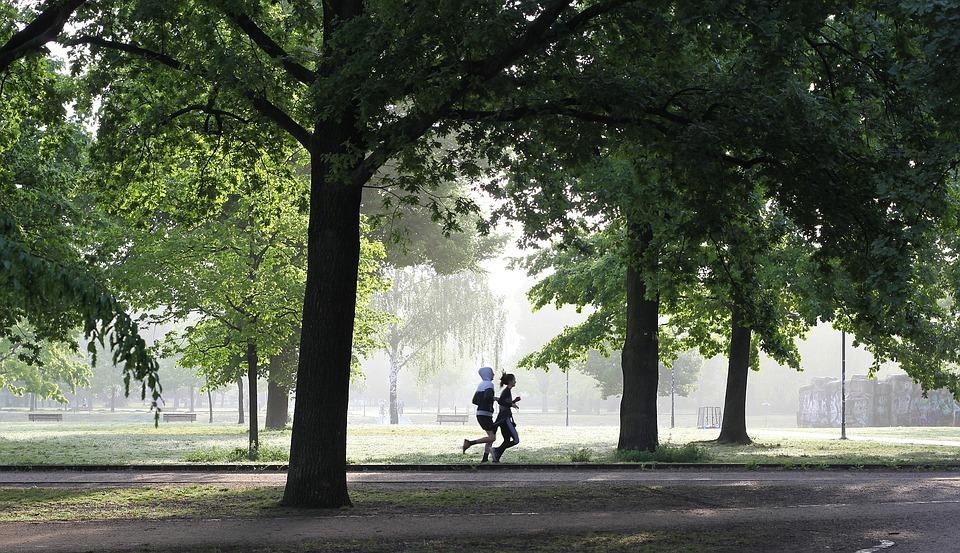 jogging-4211946_960_720.jpg