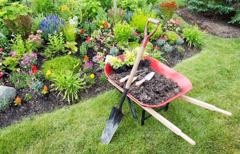 work-garden.jpg
