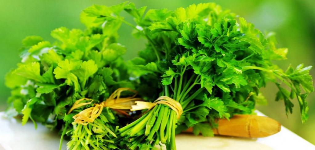 parsley-1.jpg