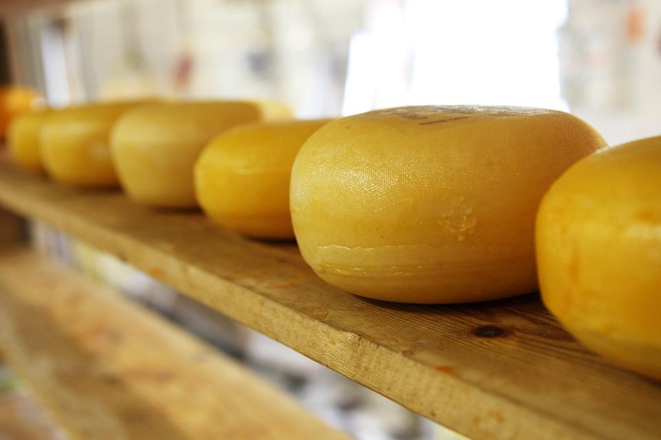 cheese-2785_960_720.jpg
