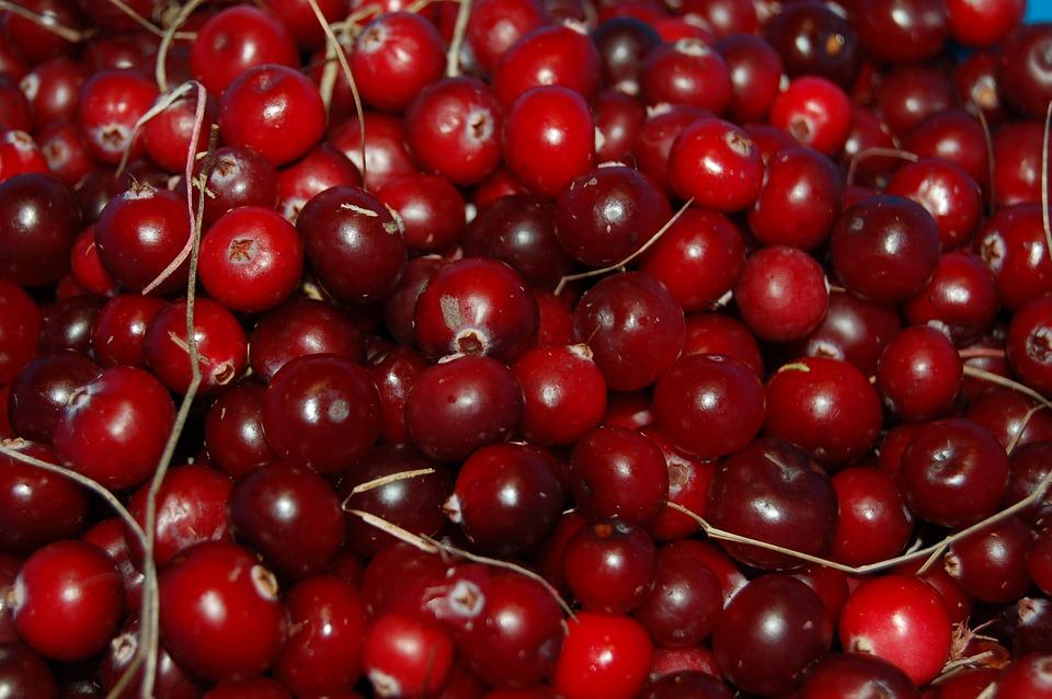 cranberries-1714174_960_720.jpg