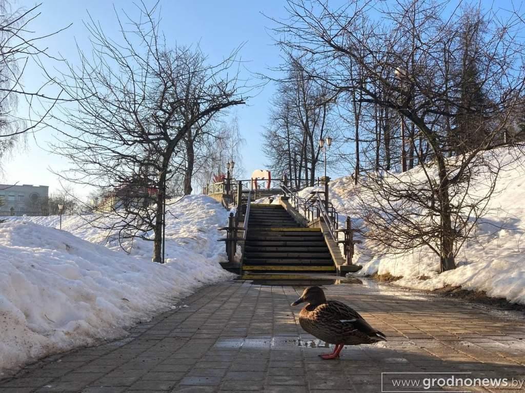 photo_2021-02-22_19-31-45.jpg