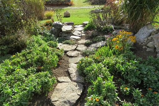 garden-207164__340.jpg