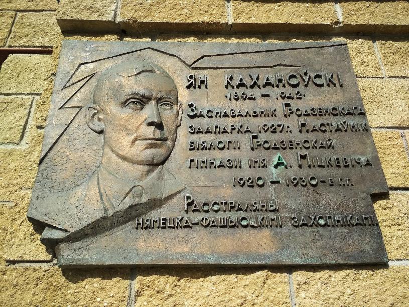 kohanovskiy1.png
