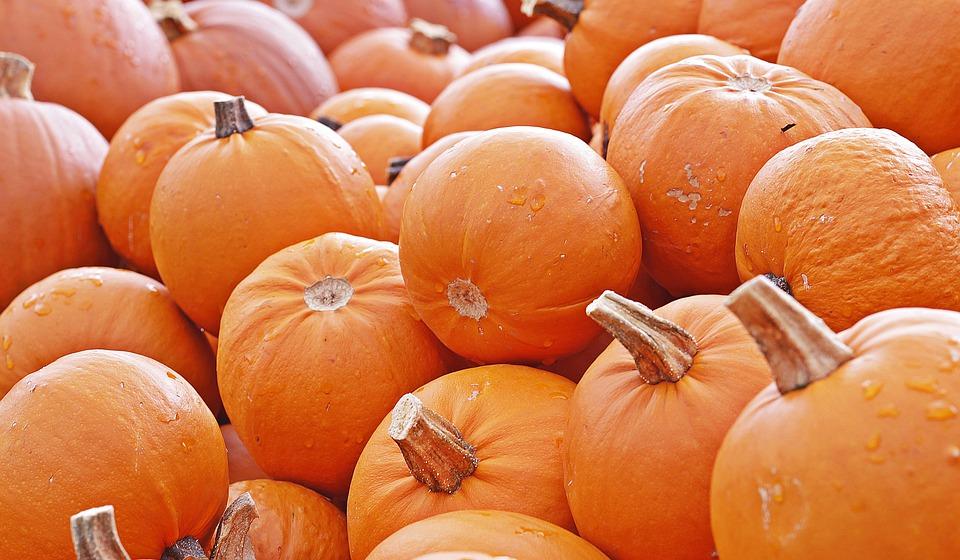 pumpkin-4461665_960_720.jpg