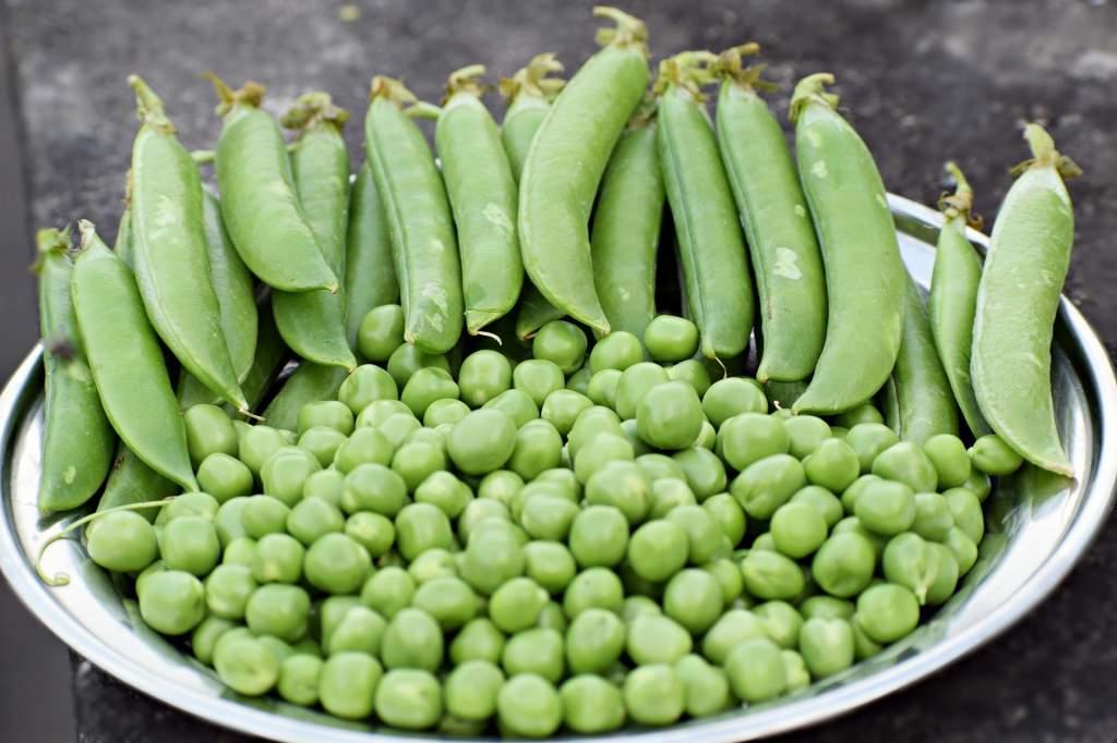vegetable-3959593_1920.jpg