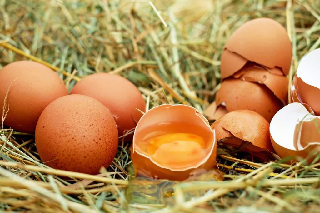 eggs-1510449_1920.jpg