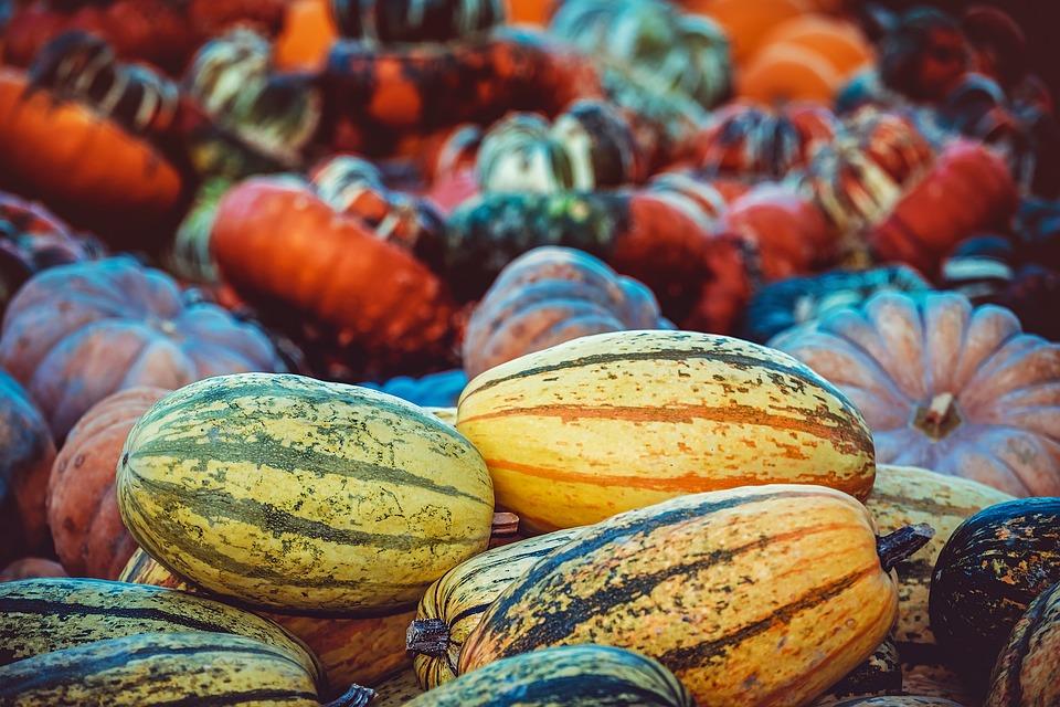 pumpkin-3759587_960_720.jpg