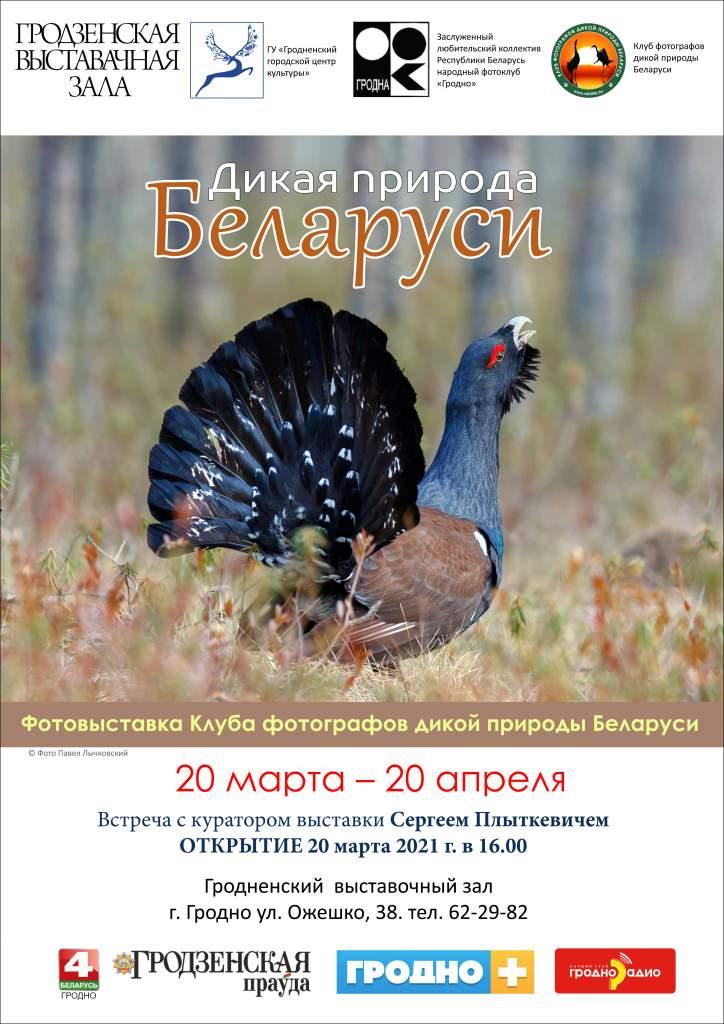 постер а3 глухарь.jpg