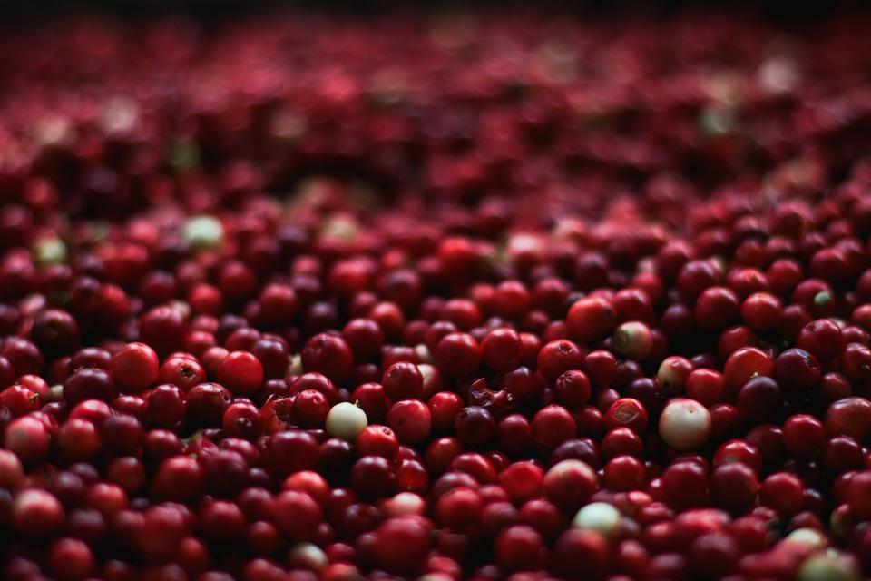 berries-1851161_960_720.jpg
