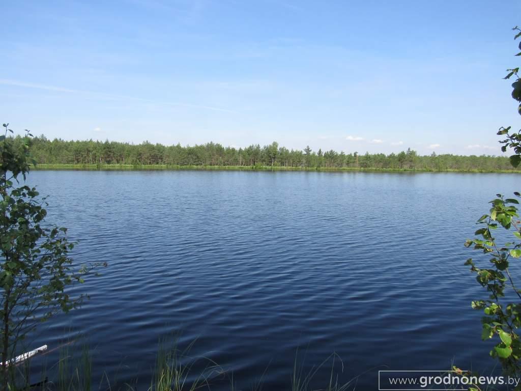 озеро Лебединое (1).JPG