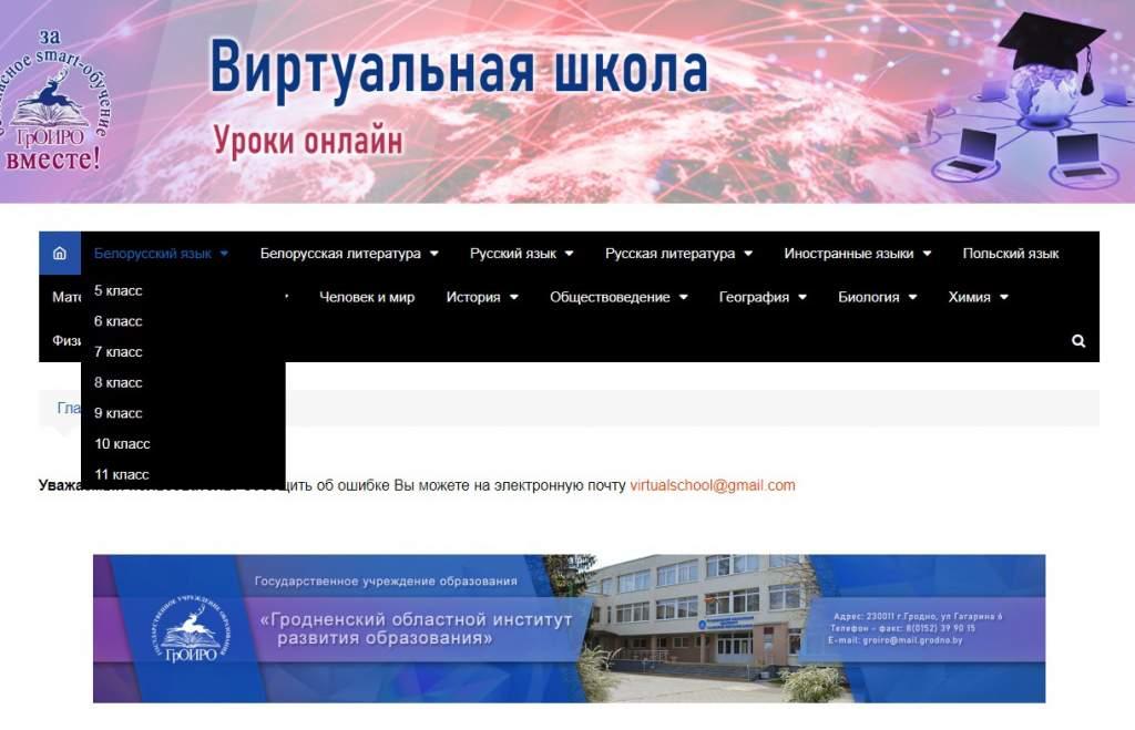 Уроки онлайн. Областной институт развития образования создал виртуальную школу