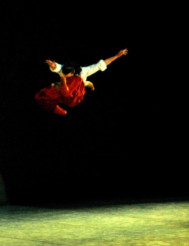 Гопае из балета Таракс Бульба.jpg