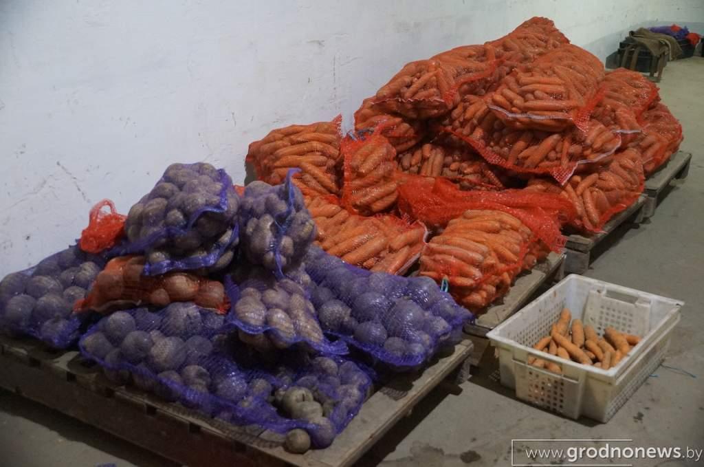 DSC03342_на овощном складе.JPG