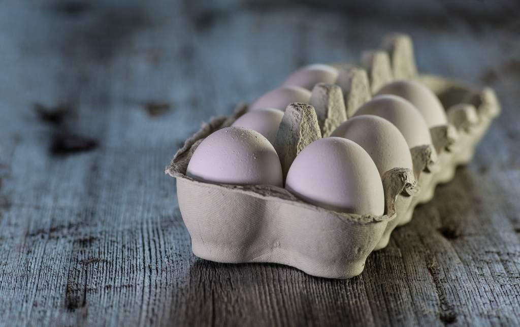 eggs-3183410_1920.jpg