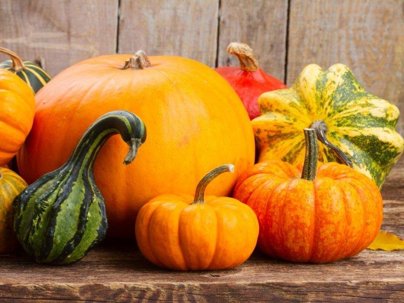 1571371398_pumpkin-01.jpg