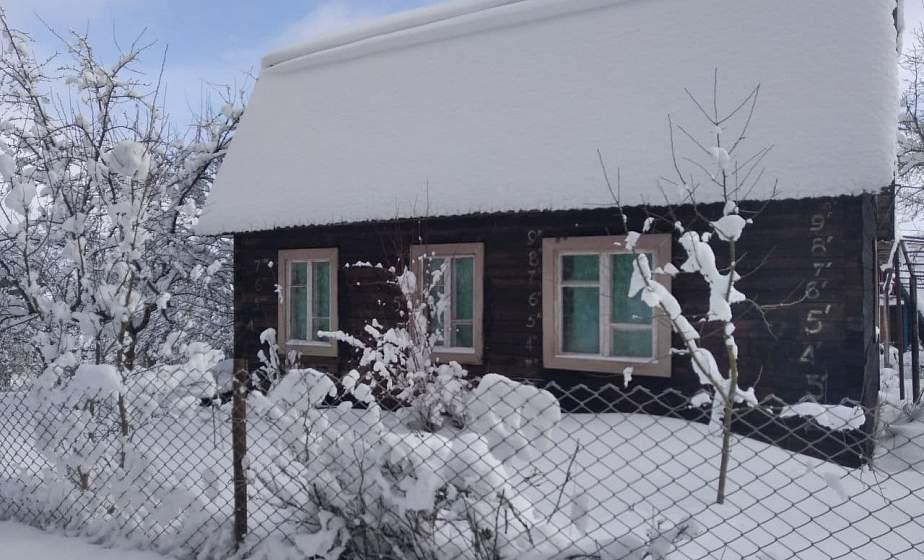 """Деревья в снежных муфтах и пушистые сугробы. Зима за городом в объективе """"ГП"""""""