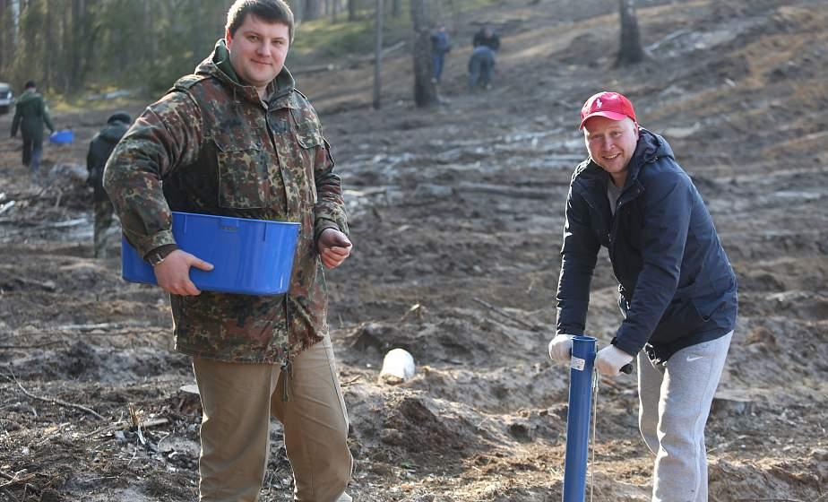 Десять миллионов саженцев за год: посадки уже начались. Ежегодная акция «Неделя леса» стартовала сегодня на Гродненщине