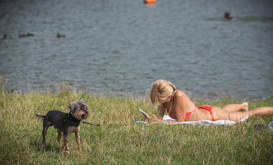 ФОТОФАКТ: Гродненцы спасаются от жары на Юбилейном озере