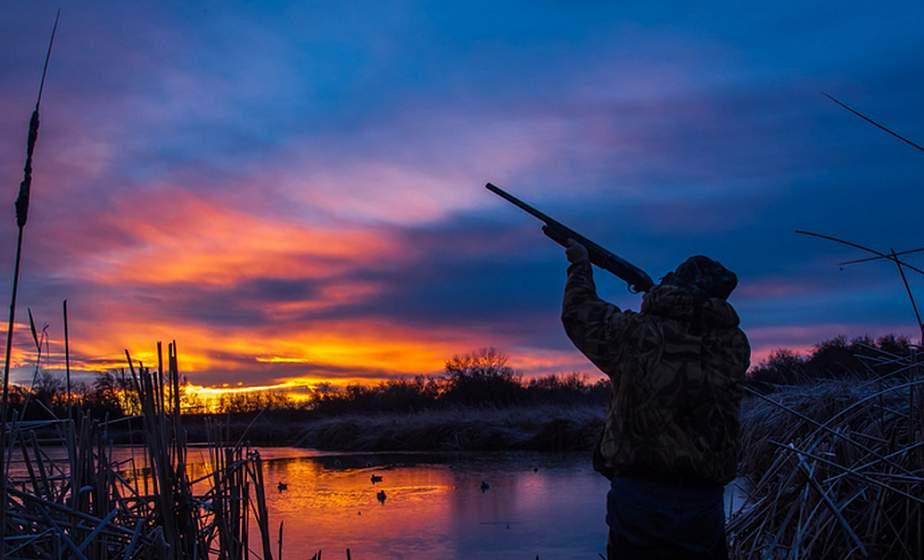 Новые охотничьи правила поспособствуют развитию иностранного туризма - Минлесхоз
