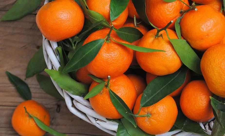 Неожиданная польза мандаринов. Как этот фрукт помогает похудеть?