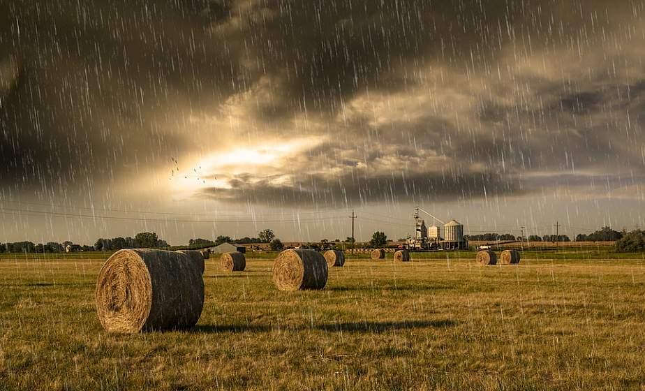 Дожди и грозы ожидаются в Беларуси в первой половине недели, к выходным погода улучшится