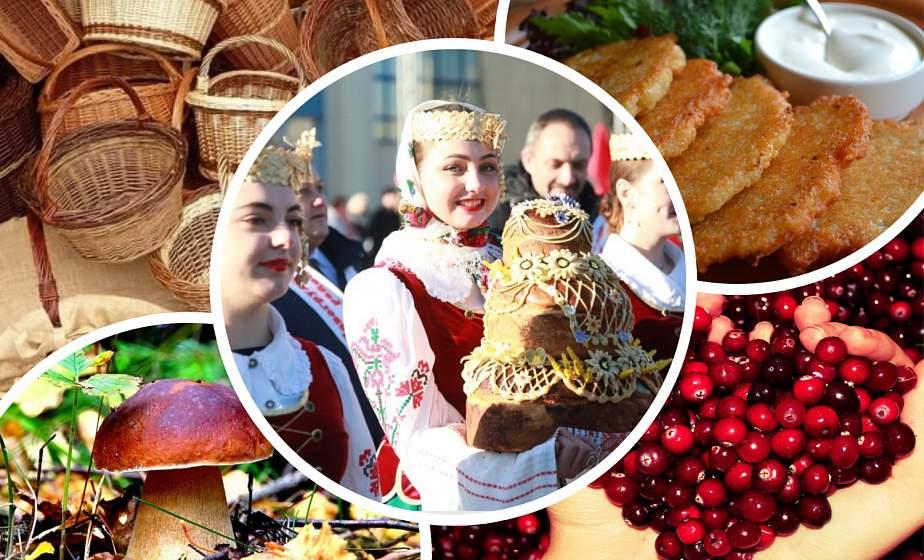 """Нескучные выходные. От """"Дажынак"""" до праздника картошки"""