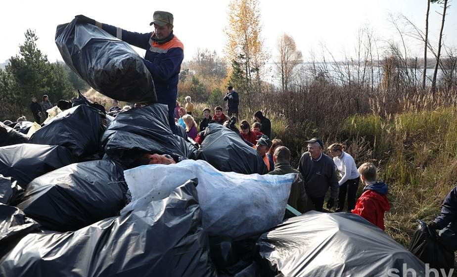 За загрязнение леса в этом году Минлесхоз привлек к ответственности 275 нарушителей