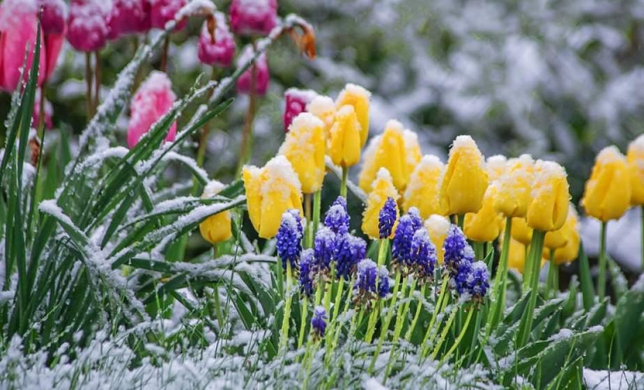 Тепло все? Синоптики предупреждают о грозах и даже снеге