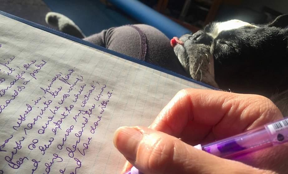 """""""Подпись внизу, и росчерк броский"""": 15 фактов о почерке"""