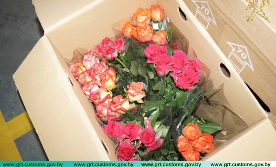 Запахло весной. Гродненские таможенники пресекли попытку незаконного ввоза более 100 тысяч роз