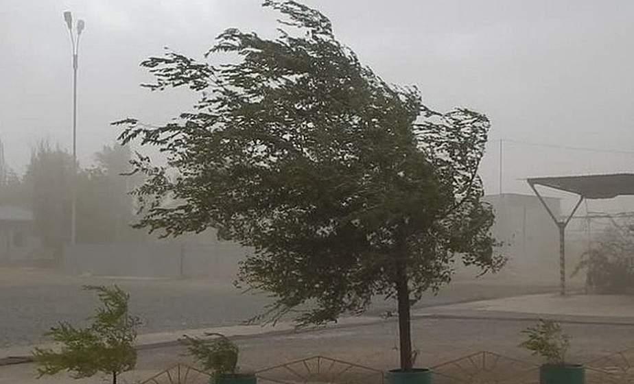 Будь в курсе! МЧС предупреждает об усилении ветра до 15-20 метров в секунду