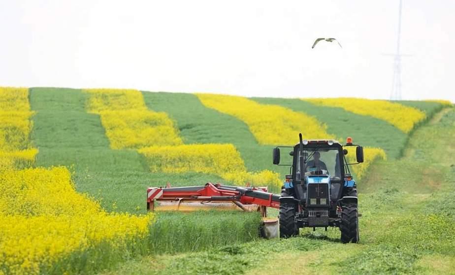 В хозяйствах области в этом году планируют заготовить 1637 тысяч тонн травяных кормов