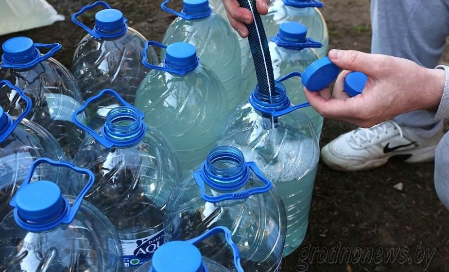 Из-за аномальной зимы заготовку березового сока на Гродненщине могут начать раньше