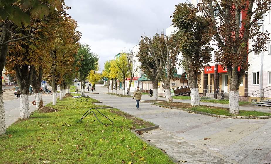 Новый облик главной улицы, муралы и клумбы. Сморгонь готовится к областным «Дажынкам-2019»