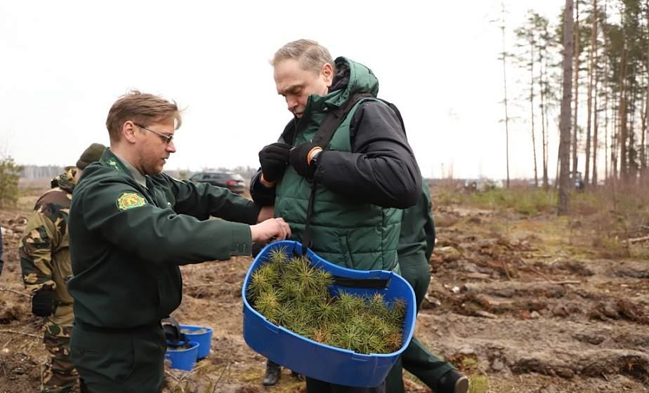 «Мы привлекаем внимание общественности к сохранению лесных богатств». Председатель облисполкома Владимир Караник присоединился к республиканской акции «Неделя леса» (+видео)
