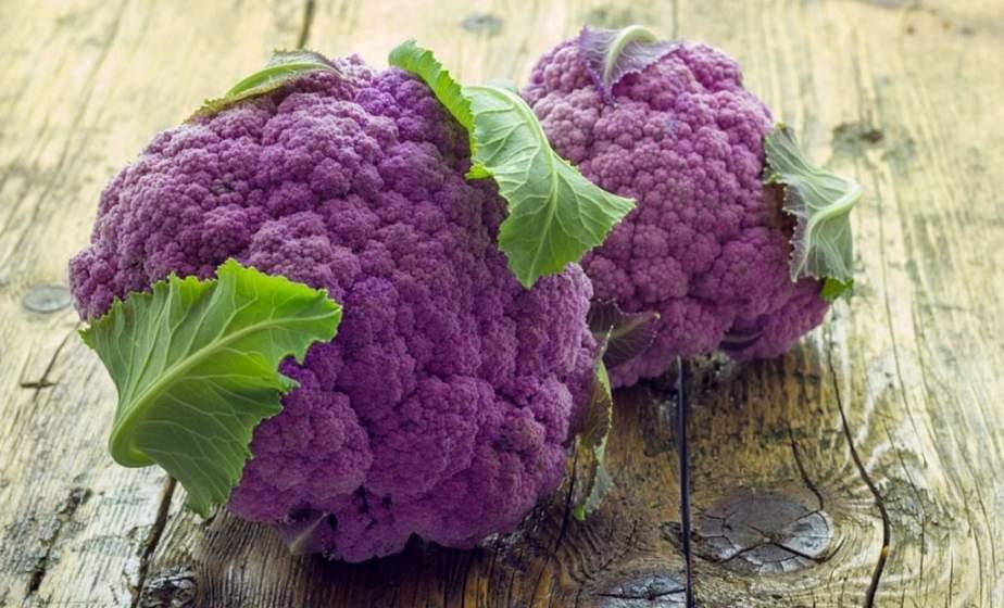 Гродненская овощная фабрика впервые предложит цветную капусту необычного окраса – оранжевую и фиолетовую