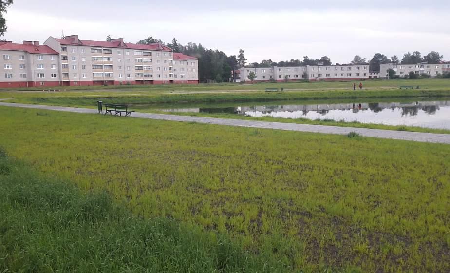Автобус в деревню, новая дорога в Лиде и благоустройство озера в Березовке. Как власти и жители вместе решают проблемы