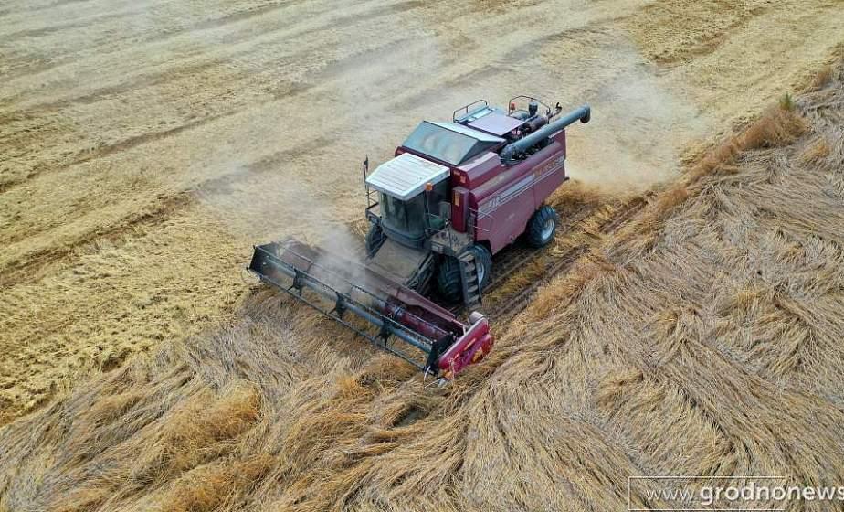 Урожай-2020: собрано более 4 млн тонн зерна