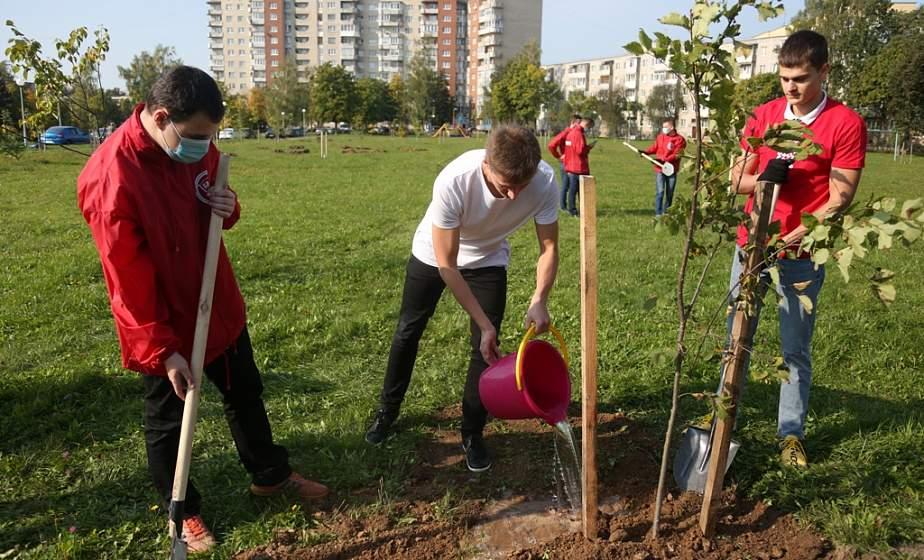 Зеленое послание. В Гродно высадили деревья в честь столетия комсомола Беларуси