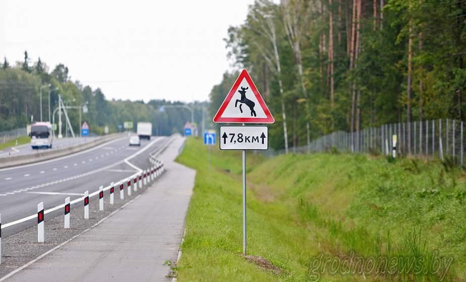 На трассе М6 устанавливают дорожные знаки