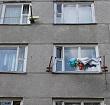 В Березовке женщина вытолкнула соседку в окно