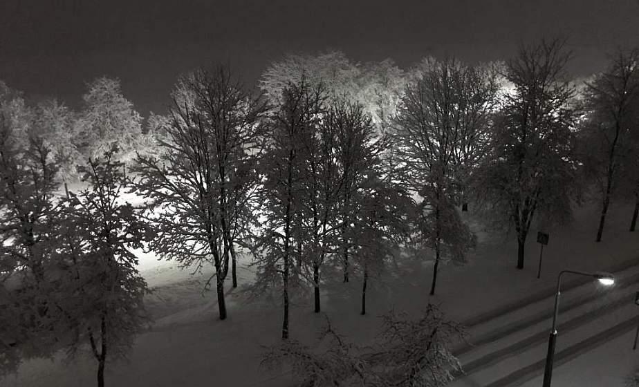 Оранжевый уровень опасности объявлен в Беларуси 27 января из-за сильного ветра