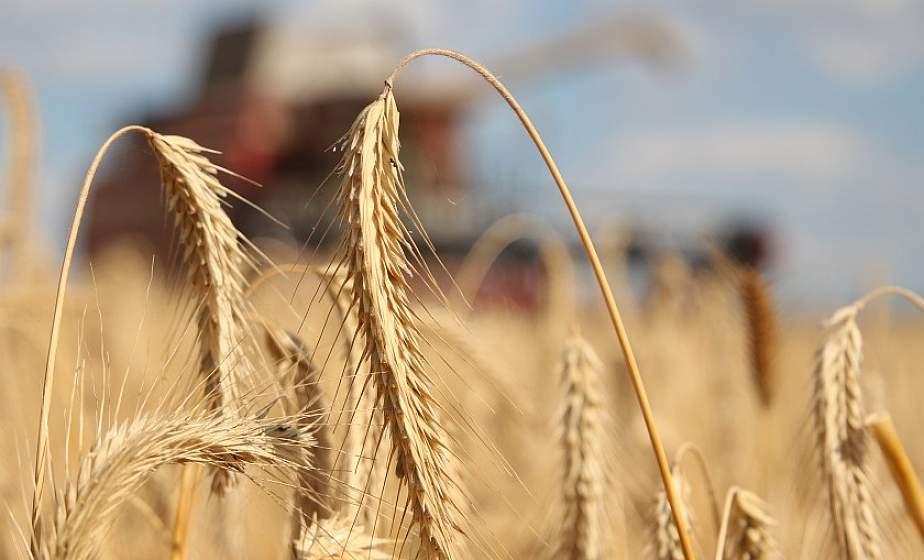 О хлебном каравае, расширении экспорта и модернизации АПК рассказал председатель комитета по сельскому хозяйству и продовольствию облисполкома Валерий Хелский