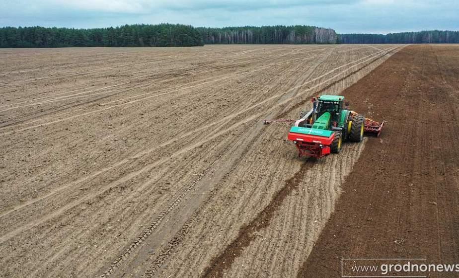 Ячмень, овес и сахарная свекла. Как на Гродненщине ведется весенне-полевой сев?
